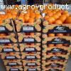 Апельсины. Египет